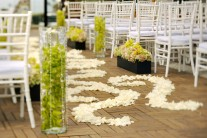beach-theme-basic-wedding-decor